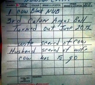 Wife scared of cow. Husband scared of wife. Cow has to go.