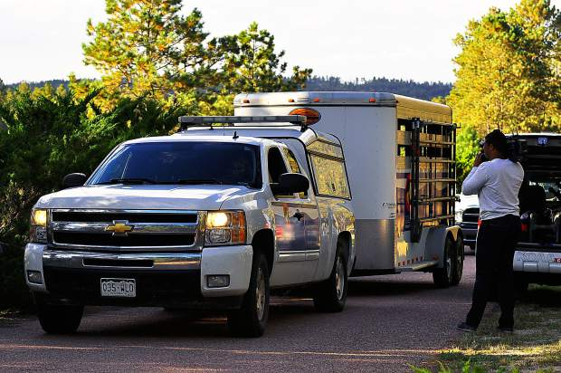 a Colorado State Humane Society trailer leaves the property at 5490 Burgess Road, Black Forest Co.Photo by Sheri Kerley