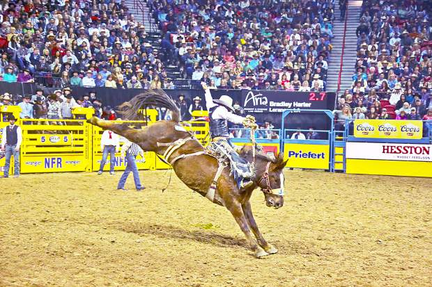 Judge Rules That Prca Can Keep Elite Rodeo Association