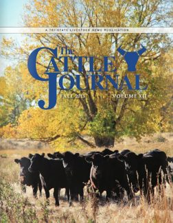Fall Cattle Journal 2013