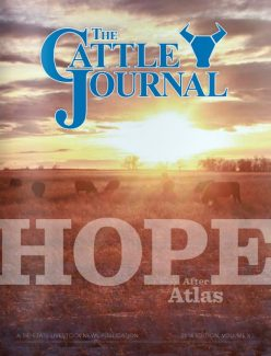 Fall Cattle Journal 2014
