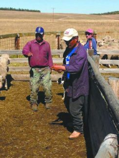 American sheep producers rely on foreign labor year-round to maintain their sheep herds. Producers invest a great deal of trust, training and money into ensuring they have a good hand  for their operation and livestock like these two Peruvian sheepherders. Photo by Sheridan Little