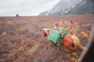 My Dream Hunt: The Spell of the Yukon