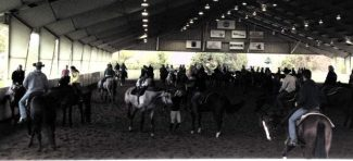Showmen and ladies warm up in a practice pen at the All American Quarter Horse Congress. Photo by Amy McLean