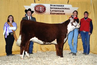Courtesy Browarny Photographics2009 NILE Hereford Grand Champion Female, L3 Desert Hope 903, owned by Largent & Sons of Kaycee, WY.