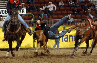2017 Wrangler National Finals Rodeo Results – Round 9