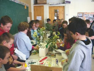 Courtesy photoMontana elementary students learn about noxious weeds found in their state by studying silk replicas. Agriculture in Montana Schools volunteers presented the information, and provide free ag-oriented educational materials for grades K-8 to over 600 schools across the state that are specifically designed to meet teaching standards.