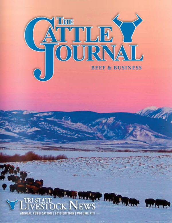 Winter Cattle Journal 2015