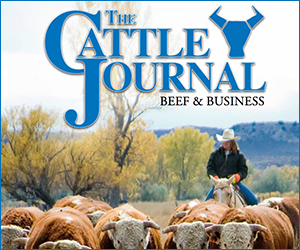 The Cattle Journal – Beef & Business 2017