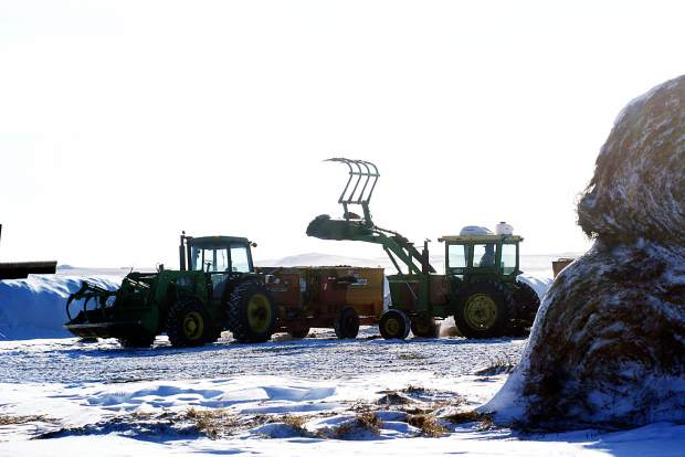 TMR mixers a favorite of cattle producers | TSLN com