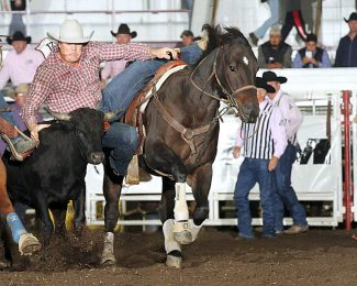 2017 Wrangler National Finals Rodeo Results – Round 8