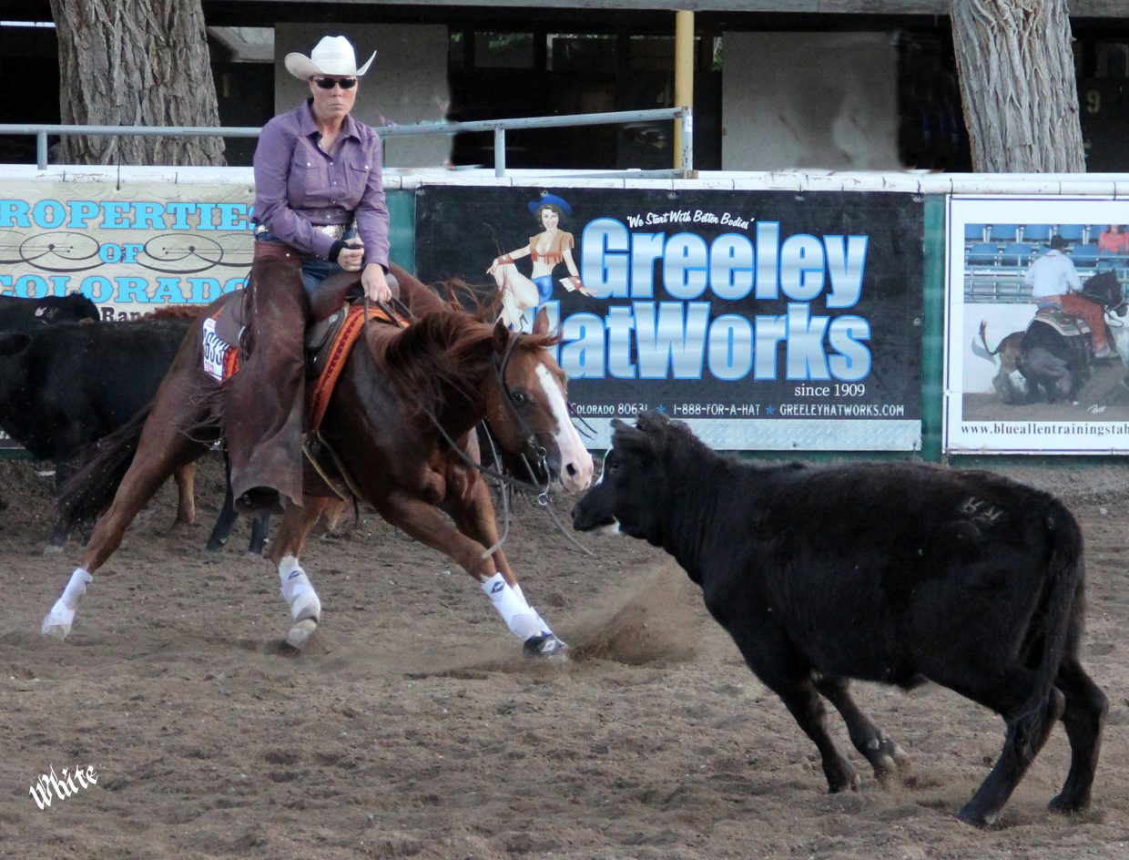 A Sutton Ranch stallion, Rios Santana, wins his class in 2013 with Heather Sutton at the Colo-rado State Fair and goes on to be a two-time qualifier for the AQHA World Show.