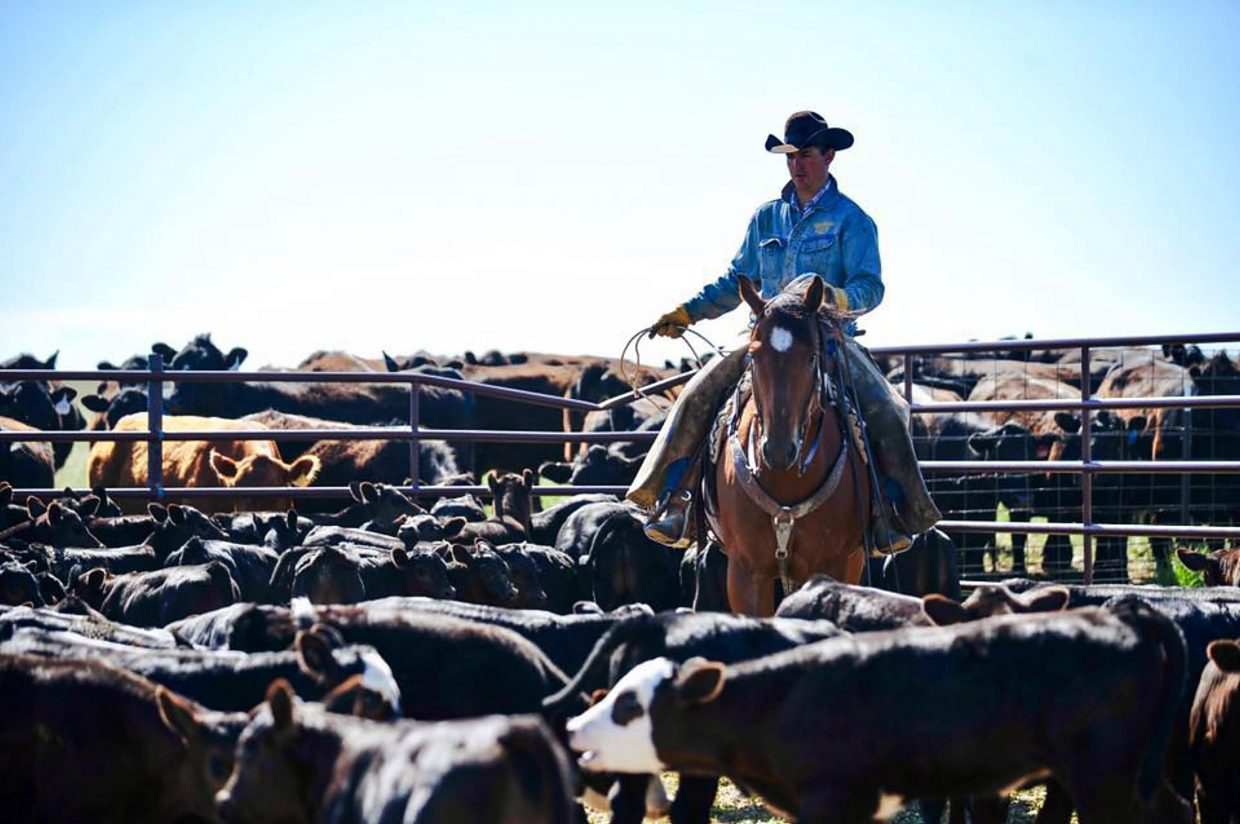 Wyo Cowboy Clay Ashurst Recovering From Ranch Rodeo Injury
