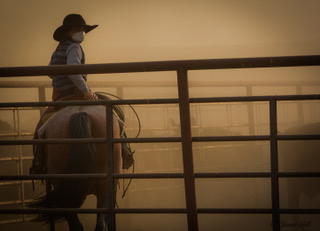 Quaid Marshall protects his lungs from the dust and smoke as he and his family helps ship yearlings at the Flat Iron Ranch, a unit of Sunlight Ranch in Montana. Photo by Jamie Gill.
