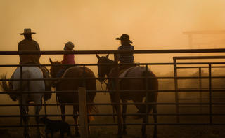 Lacey Vershoot, Clancy and Quaid Marshall help ship yearlings at the Flat Iron Ranch, a unit of Sunlight Ranch in Montana. They used masks to cover their noses and mouths because of the dust and smoke from drought and fires. Photo by Jamie Gill.