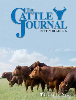 Winter Cattle Journal 2018
