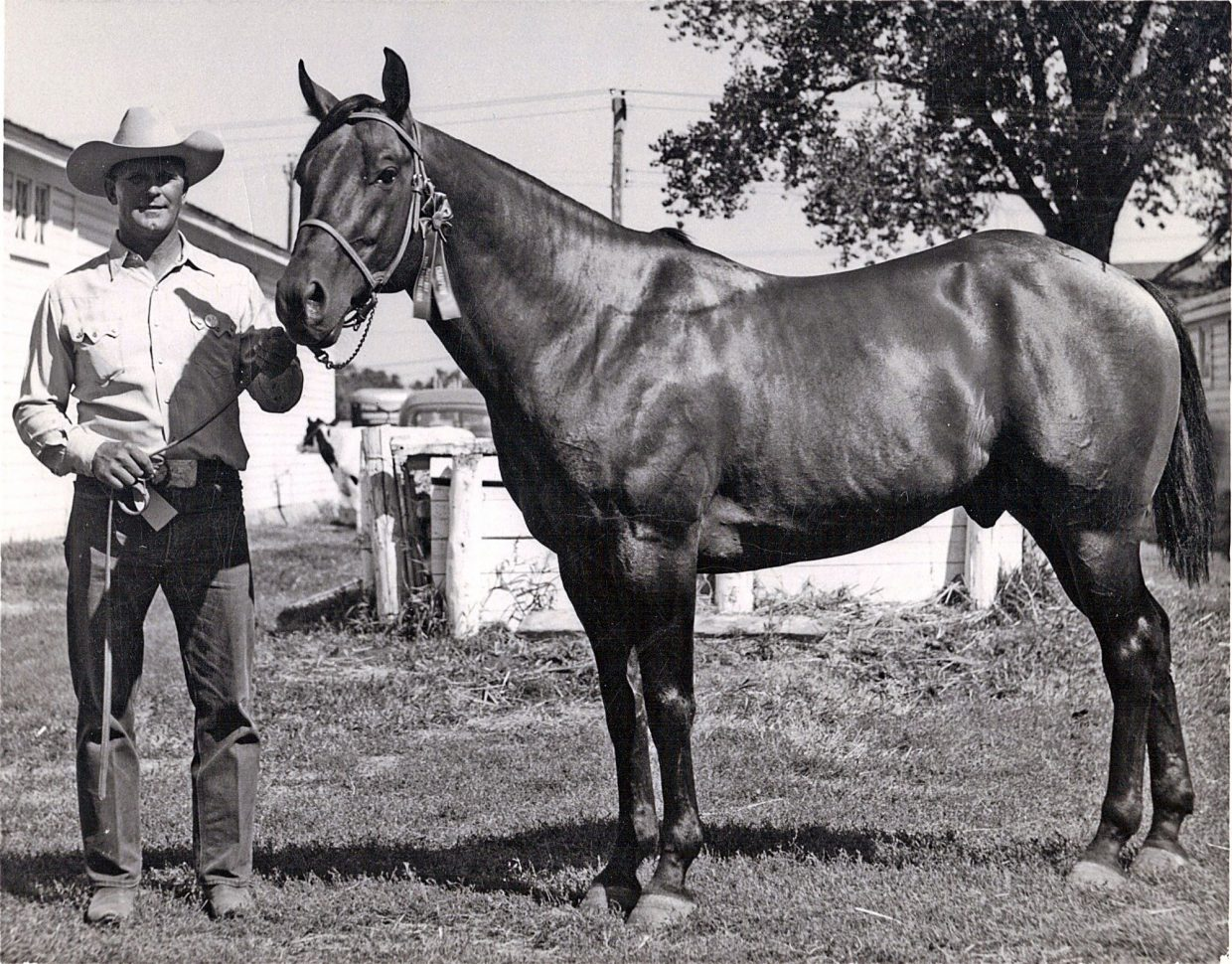 "Randy guesses it was the ""cow in him"" that made Poco Speedy, the foundation sire for the Flying S Ranch, a favorite of Stanley's. Stanley competed in cutting and bulldogging successfully on the stallion."