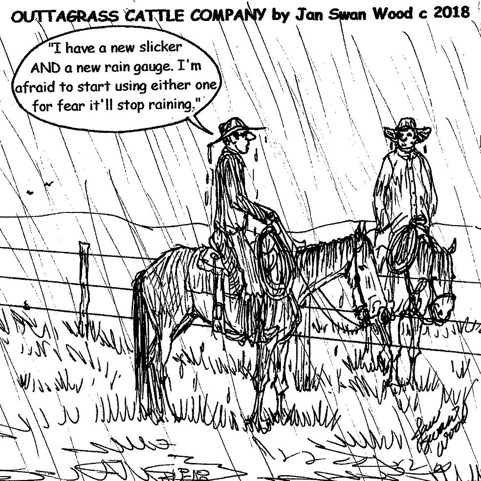 6b324e6273b Outtagrass cattle co cartoon jan swan wood for the may edition of tri state  livestock news