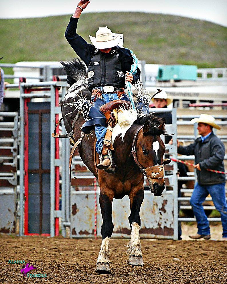 HS Rodeo 2018 Cash Wilson didn't start riding saddle broncs until he was a freshman in high school. Now, as a junior, he has competed in National High School Rodeo Association final each year of high school. Photo by Alaina Stangle
