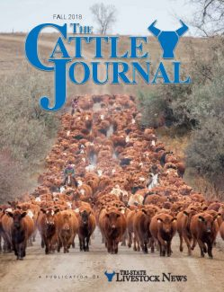Fall Cattle Journal 2018