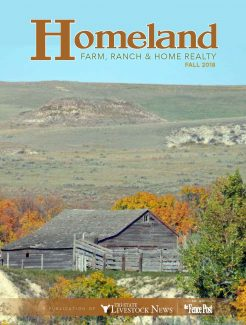 Homeland Real Estate Fall 2018
