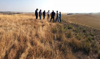 Once a  cheater…chemical may help control cheatgrass