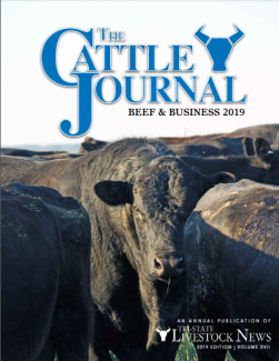Winter Cattle Journal 2019