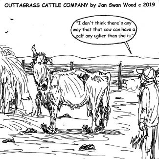 Outtagrass Cattle Co. cartoon by Jan Swan Wood