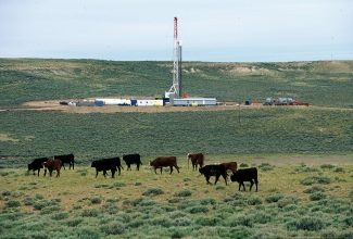 Immeasurable absurdity: drilling halted on 500 square miles of BLM land