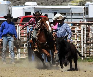 On the move: Montana Junior High Rodeo Finals in Sidney for two to three years