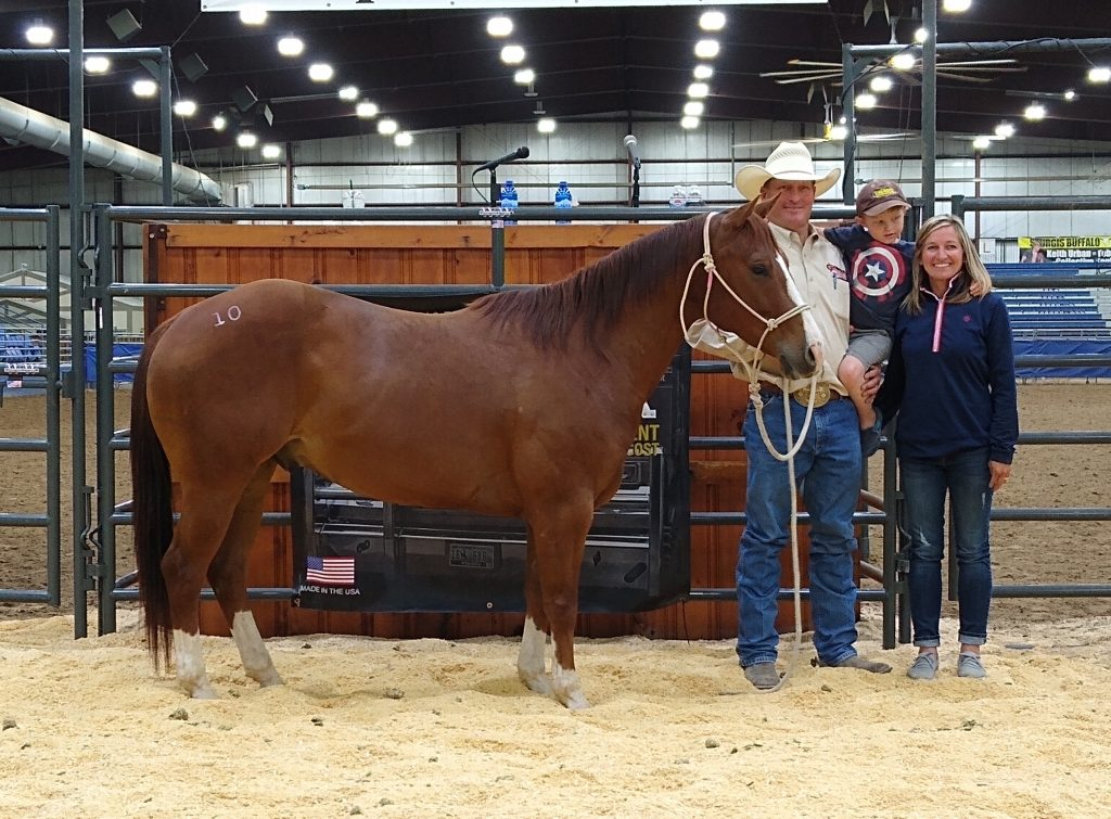 Black Hills Stock Show Summer Horse Sale