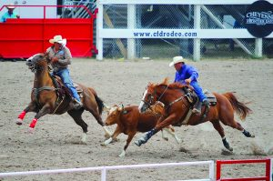 'Daddy Issues' Some Calf ropers and steer wrestlers boycott CFD