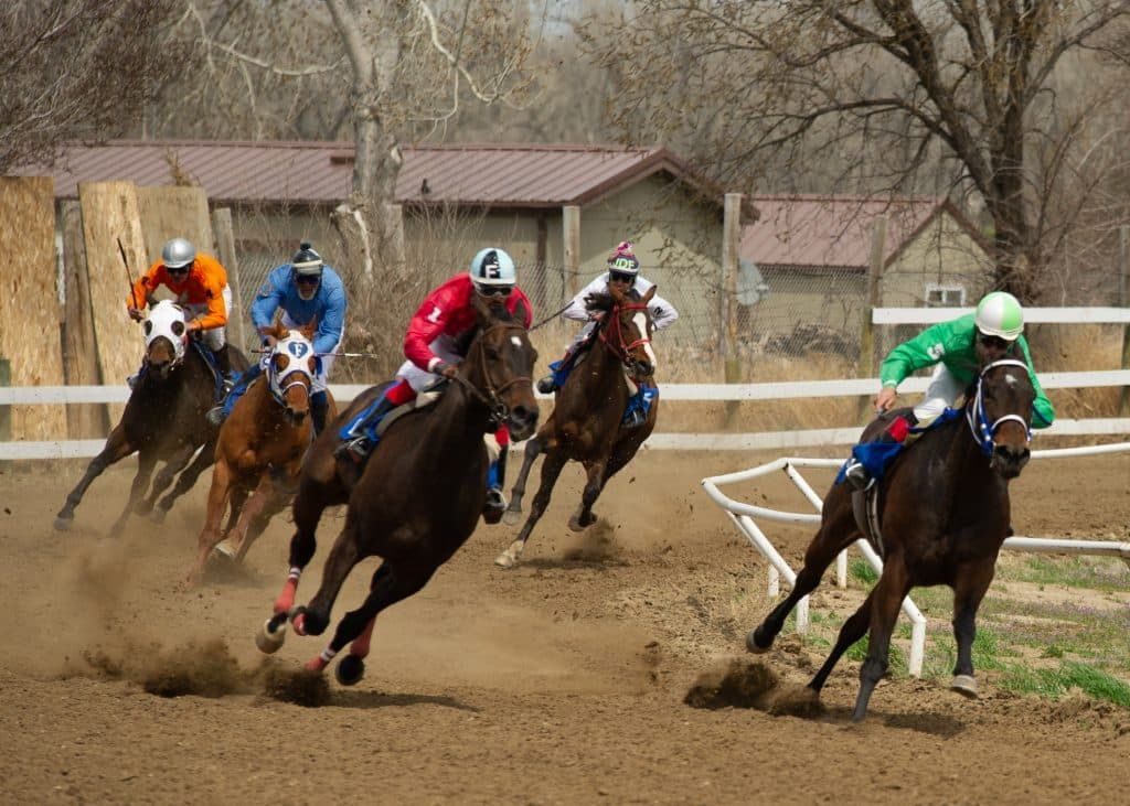 Horse betting in south dakota aiding and abetting a criminal offence codes